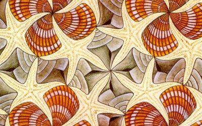 17 novembre 2017: Matematica e fisica: Simmetrie, asimmetrie, forze e particelle